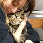 猫を抱いている加藤綾子